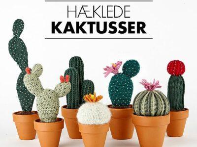 Haeklede-kaktusser