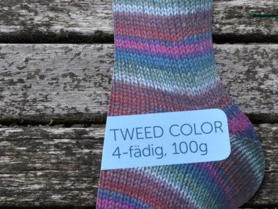 Regia strømpegarn | Tweed Color | Winterzauber color