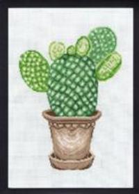 Broderikit kaktus mickey