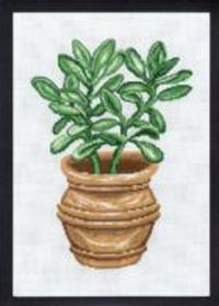 Broderikit kaktus paradistræ