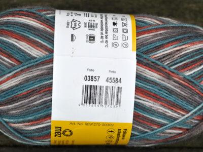 Strømpegarn Regia Gargia Color 3857